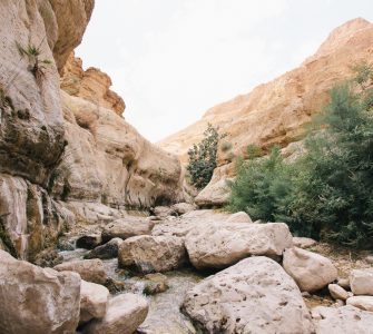Mountains Israel