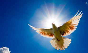 Who created the Holy Spirit?