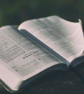 Bible - Devotionals