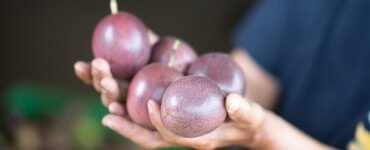 The fruit of the trees is a gift from God
