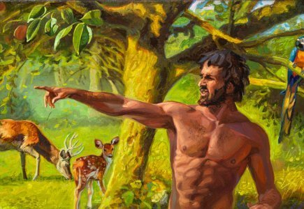 What does the biblical creation account teach us?