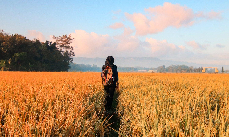 woman_field